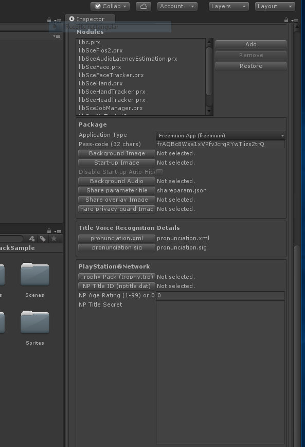 How to Compile and Build with Unity for PS4 FPKG by RetroGamer74 7.PNG