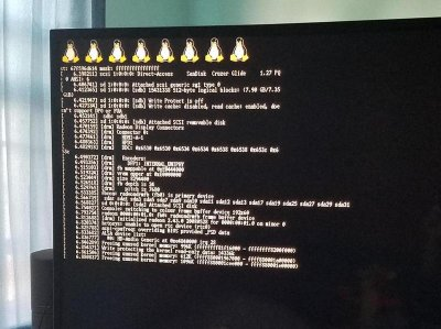 PS4_Linux_Patched.jpg